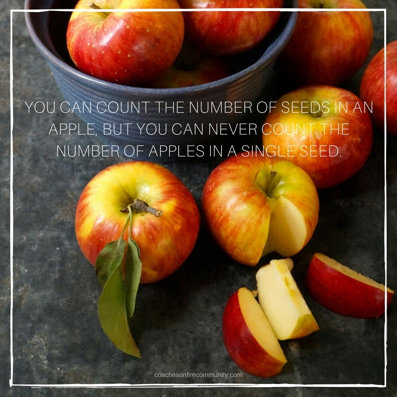 You Can Count The Number Of Seeds In An Apple But You Can Never Count The Number Of Apples In A Single Seed. Min